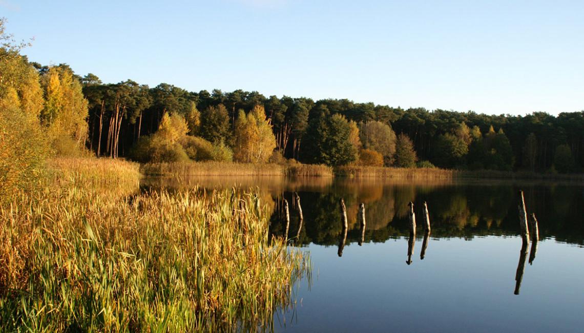 fot_3_jezioro_w_borach_tucholskich